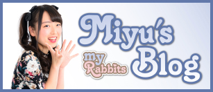 MR-blogmiyu web