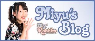 MR-blogmiyu web